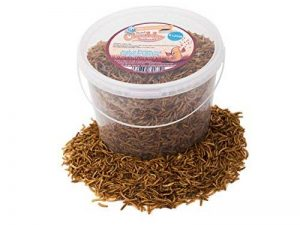5litres de vers de farine séchés Chubby pour oiseaux sauvages, livraison gratuite de la marque Chubby Mealworms image 0 produit