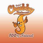 5litres de vers de farine séchés Chubby pour oiseaux sauvages, livraison gratuite de la marque Chubby Mealworms image 6 produit