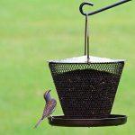 abreuvoir à oiseaux jardin TOP 0 image 2 produit