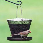 abreuvoir à oiseaux jardin TOP 0 image 3 produit