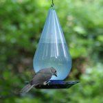 abreuvoir à oiseaux jardin TOP 7 image 4 produit