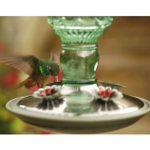 ABREUVOIR pour 8108–2Vert antique Bouteille 283,5gram en verre Hummingbird Feeder de la marque Perky Pet image 1 produit