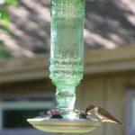 ABREUVOIR pour 8108–2Vert antique Bouteille 283,5gram en verre Hummingbird Feeder de la marque Perky Pet image 2 produit