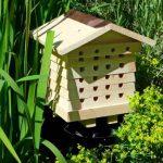 abri abeille solitaire TOP 1 image 3 produit