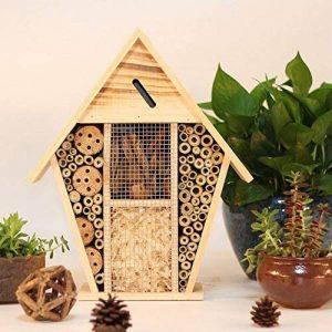 abri abeille solitaire TOP 14 image 0 produit