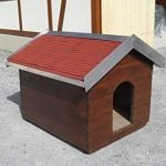 abri mangeoire pour oiseaux TOP 1 image 1 produit