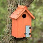 abri oiseau en bois TOP 9 image 1 produit