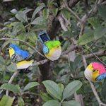 aider les oiseaux en hiver TOP 3 image 1 produit