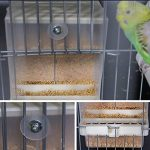Alimentateur automatique de perroquet, mangeur d'oiseau de No-Mess, récipient de nourriture pour la perruque Cockatiel de canari de canne de la marque webeauty image 4 produit