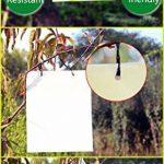 arbre à insectes TOP 6 image 1 produit