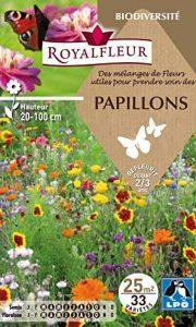 attirer papillon TOP 1 image 0 produit