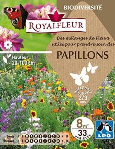 attirer papillon TOP 2 image 0 produit