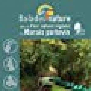 Balades nature dans le Parc naturel régional du Marais poitevin de la marque Jean Chevallier image 0 produit