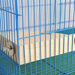 Bird plate-forme Perchoir support en bois pour petits animaux Amazones Parrot perruche calopsitte élégante perruche gerbille Rat souris chinchilla Hamster Cage Accessoires d'exercice Jouets Sector de la marque XMSSIT image 5 produit