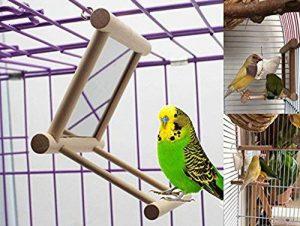 Bird Swing, Pet Bird Miroir, Parrot Cage Jouets, Bird perchoirs pour les perroquets support en bois jouer Jouets, balançoire à suspendre à jouer avec miroir pour perroquet africain Gris cacatoès perruche calopsitte élégante inséparables canaris par Ayuboo image 0 produit