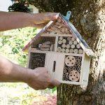 boîte à insectes en bois TOP 14 image 1 produit