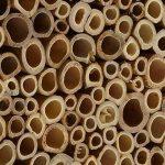 boîte à insectes en bois TOP 3 image 2 produit