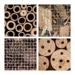 boîte à insectes en bois TOP 4 image 3 produit