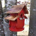 boule de graisse oiseaux prix TOP 11 image 1 produit