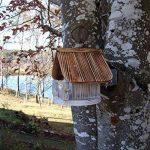 boule de graisse oiseaux prix TOP 6 image 1 produit