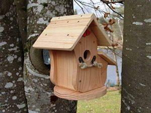 boule de graisse oiseaux prix TOP 9 image 0 produit