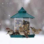 boule à oiseaux TOP 0 image 3 produit