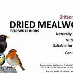 Britten & James - Dried Mealworms Mealworms secs. Nourriture pour les oiseaux sauvages. 3 litres. Baignoire scellée de la marque Britten & James image 1 produit