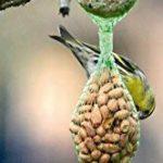cacahuètes pour oiseaux jardin TOP 4 image 1 produit