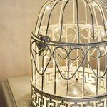 Cage Oiseaux Décorative en Métal et Bois Blanc Effet Rustique Style Shabby Chic 26cm Avec Crochet de Suspension - Détail Cœur Idéal Mariage (Avec Guirlande LED) de la marque Festive Lights image 1 produit