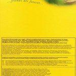 Cédé Eifutter Exoten - Nourriture pour oiseaux insectivores - 1 x 0.6 kg de la marque Cédé image 2 produit