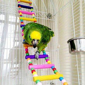 chou-rave Bird échelles, perruches en bois Jouets pour animaux Cage à oiseaux Hamac Swing jouet à suspendre pour perruches cacatoès, Conures, Aras, perroquets, inséparables, pinsons de la marque Rabi image 0 produit