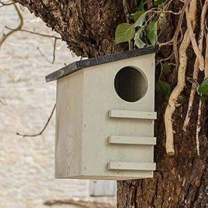 CKB Ltd® Squirrel House écureuil Boîte de nidification maison en abris de faune sauvage en bois de pin de la marque CKB image 0 produit