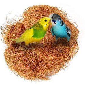 coco oiseau TOP 10 image 0 produit
