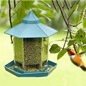 colibri mangeoire TOP 13 image 0 produit