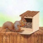 écureuil noix TOP 12 image 3 produit
