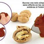 écureuil noix TOP 9 image 1 produit