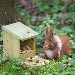 écureuil nourriture hiver TOP 12 image 1 produit