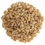 Dehner Natura Sac de graines de tournesol décortiquées 10kg de la marque Dehner image 1 produit