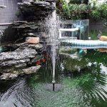 eau pour oiseaux TOP 8 image 1 produit