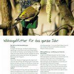 Erdtmanns Boules de Graisse pour Oiseaux Carton de 100 de la marque Erdtmanns image 6 produit