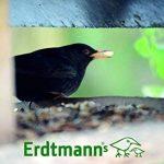 Erdtmanns Cacahuète Onement Hachées pour Oiseaux 1 Kg de la marque Erdtmanns image 3 produit
