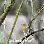 Erdtmanns Snackbar Mangeoire à oiseaux de la marque Erdtmanns image 2 produit