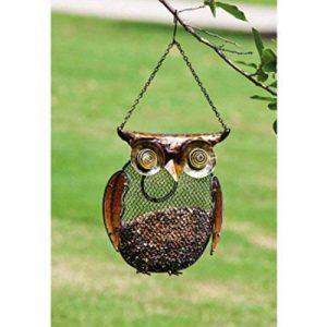 Evergreen Enterprises 2bf215Hibou en métal et en verre pour oiseaux, Bronze, 26.92x 24.38x 6.1cm de la marque Evergreen image 0 produit