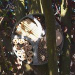 Gardigo 90567 - Hôtel à Insectes Rend en Bois Naturel/Bambou; Refuge pour Hibernation/Nidification; Maison, Abri, Nichoir à Coccinelle Abeilles Papillons Guêpes; 30 x 30 x 6,5 cm de la marque Gardigo image 3 produit