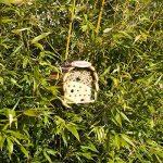 Gardigo Hôtel à insectes pour abeilles & coccinelle naturholzfarben de la marque Gardigo image 6 produit