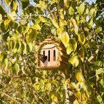 Gardigo Hôtel pour papillon | maison, abri à coccinelle abeilles et pour plusieurs insectes | en bois naturel | facile à suspendre - Idée cadeau Noël de la marque Gardigo image 5 produit