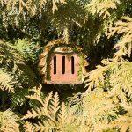 Gardigo Hôtel pour papillon | maison, abri à coccinelle abeilles et pour plusieurs insectes | en bois naturel | facile à suspendre - Idée cadeau Noël de la marque Gardigo image 6 produit