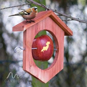 Gardigo Mangeoire à oiseaux en bois | Idéale pour pommes et boules de graisse - 18,5 x 18 x 4 cm de la marque Gardigo image 0 produit