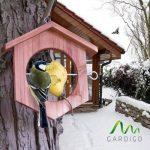 Gardigo Mangeoire à oiseaux en bois | Idéale pour pommes et boules de graisse - 18,5 x 18 x 4 cm de la marque Gardigo image 1 produit