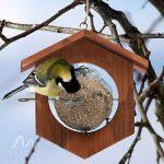 Gardigo Mangeoire à oiseaux en bois   Idéale pour pommes et boules de graisse - 18,5 x 18 x 4 cm de la marque Gardigo image 2 produit